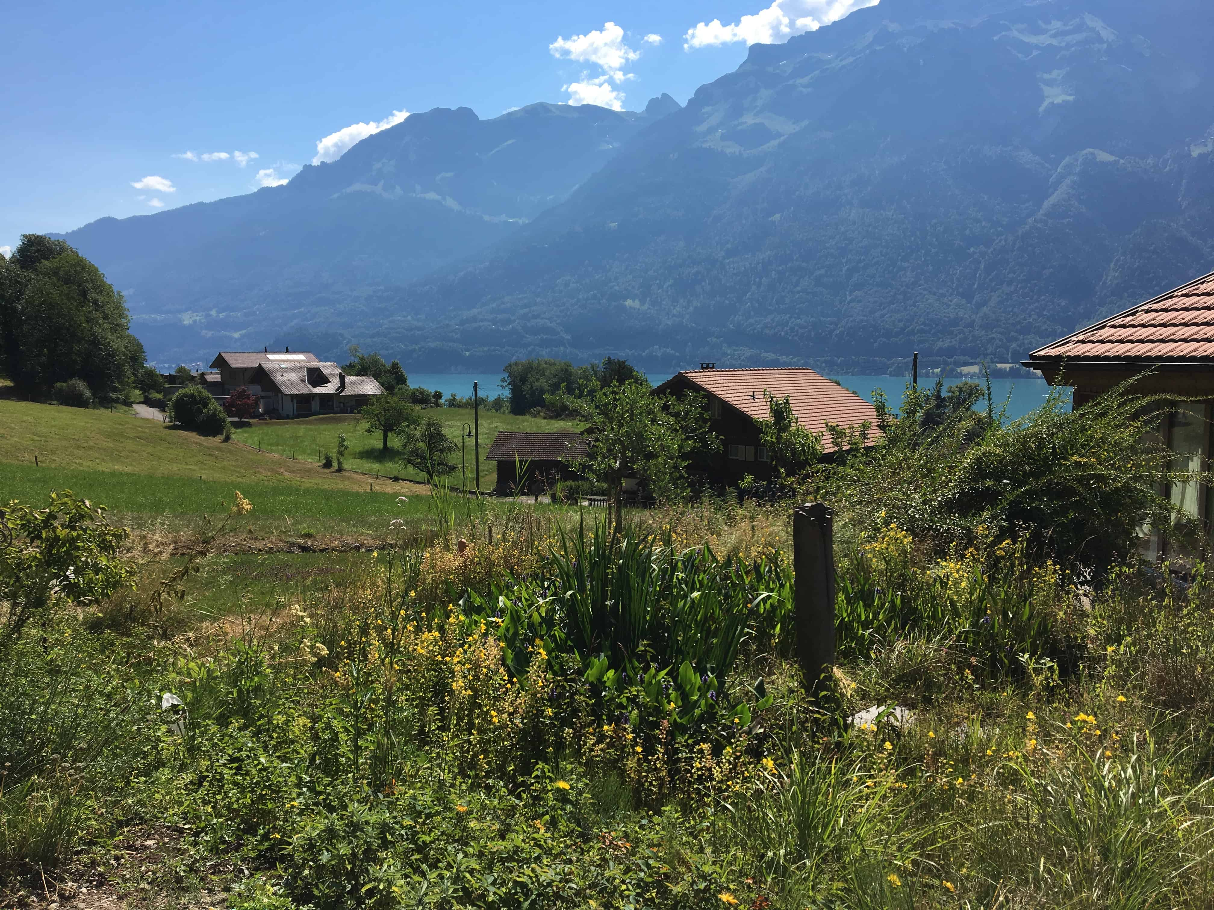 Blick vom Visionshaus auf Brienzer See